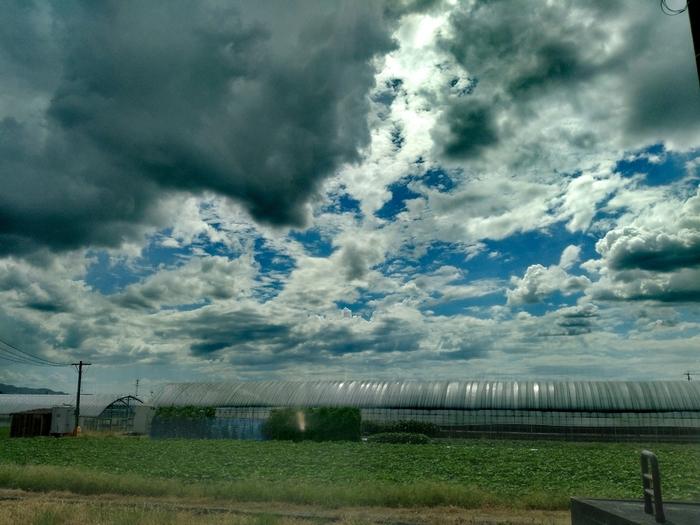 農地の天候に異変が起こりそうな図
