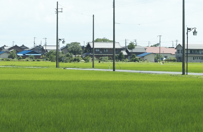 農地の相続の際の農家住宅のイメージ図