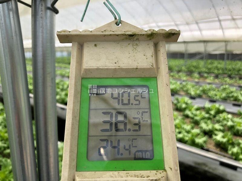 ハウス内が高温を示した温度計