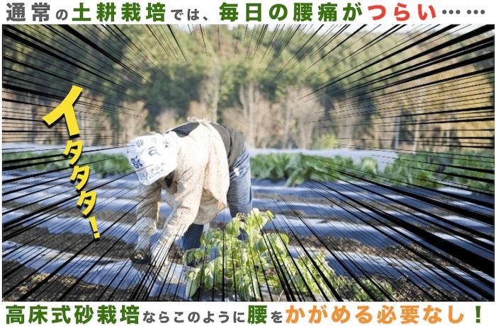 砂栽培のメリット