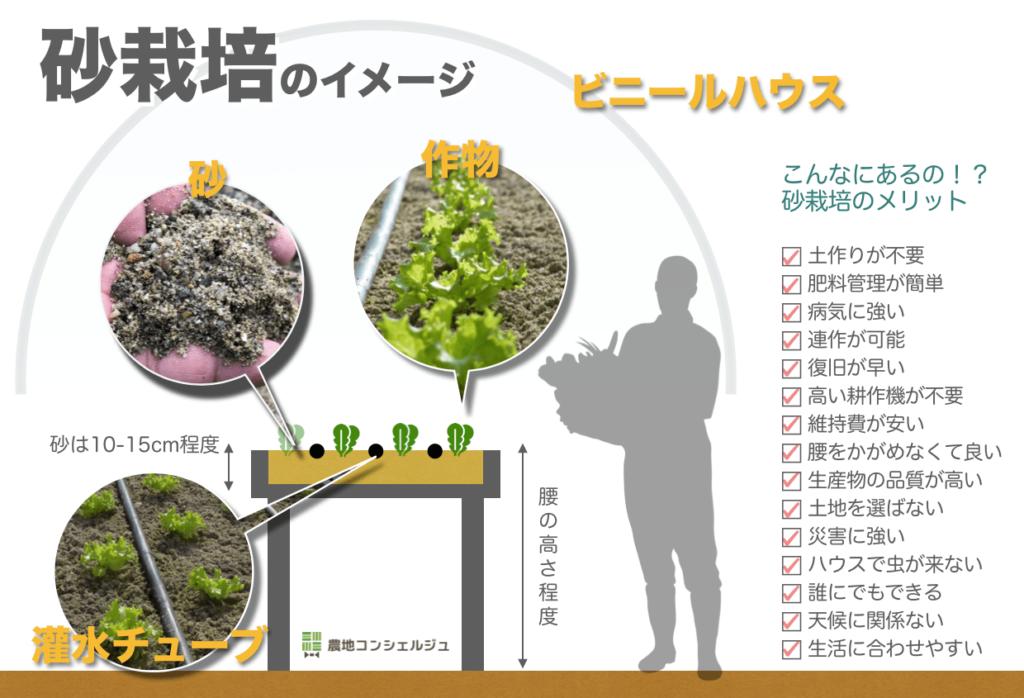 砂栽培の全体像(高床式)
