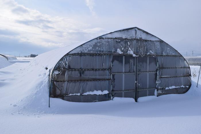 積雪イメージ画像