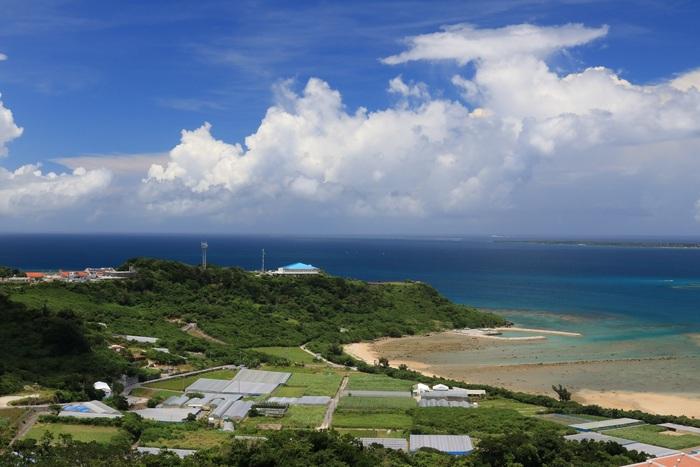 沖縄のビニールハウス