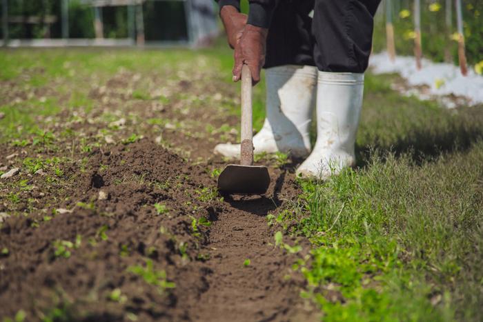 一般的な農作業