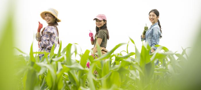 農事組合法人イメージ画像