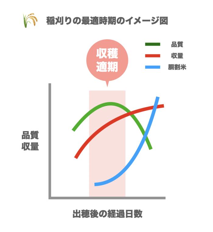 稲刈りの最適時期のイメージ図